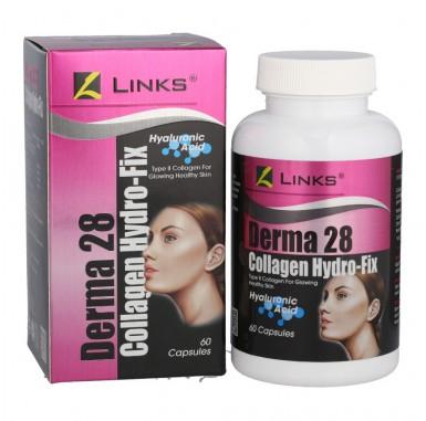 Links Derma 28 (Collagen Hyro-Fix)